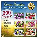 Bienen Paradies Blumenzwiebeln - 200 Stück - handverlesene...