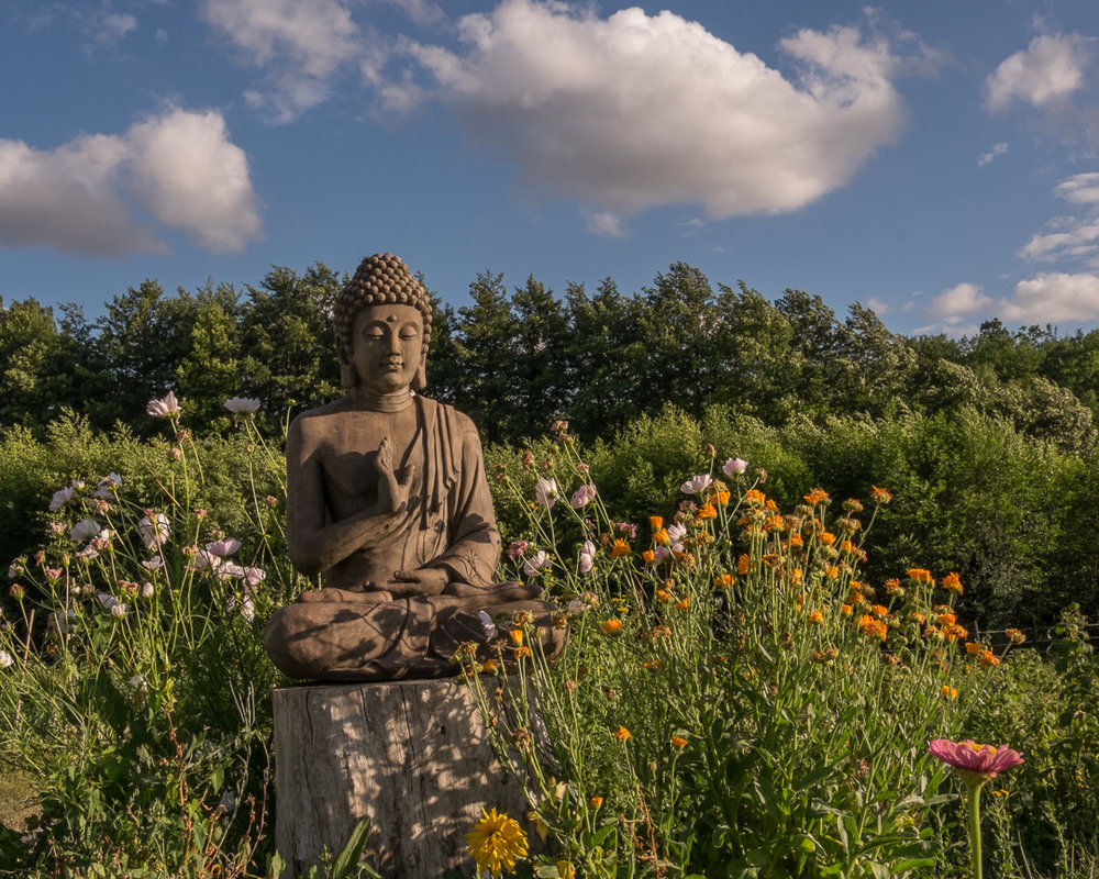 Buddhastatue Plum Village+2015+Happy+Farm_by+Paul+Davis