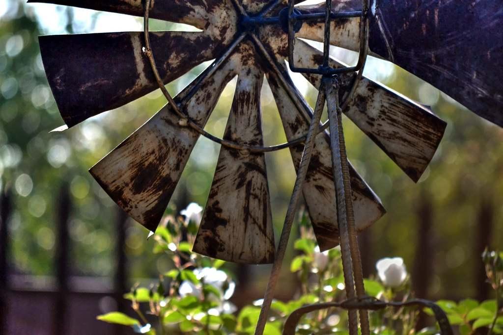 Ein quietschendes Windrad vertreibt den Maulwurf